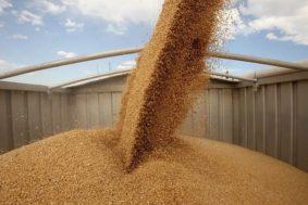 image14030772 b26a8ee95d015c1baa24bb6a4a93598b 4 0 283x189 - Экспорт пшеницы в Турцию разрешён
