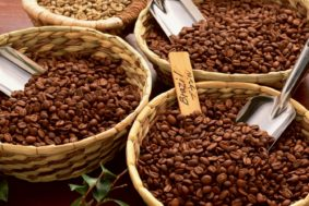 540 283x189 - Бразилия критически снизила экспорт кофейных зерен