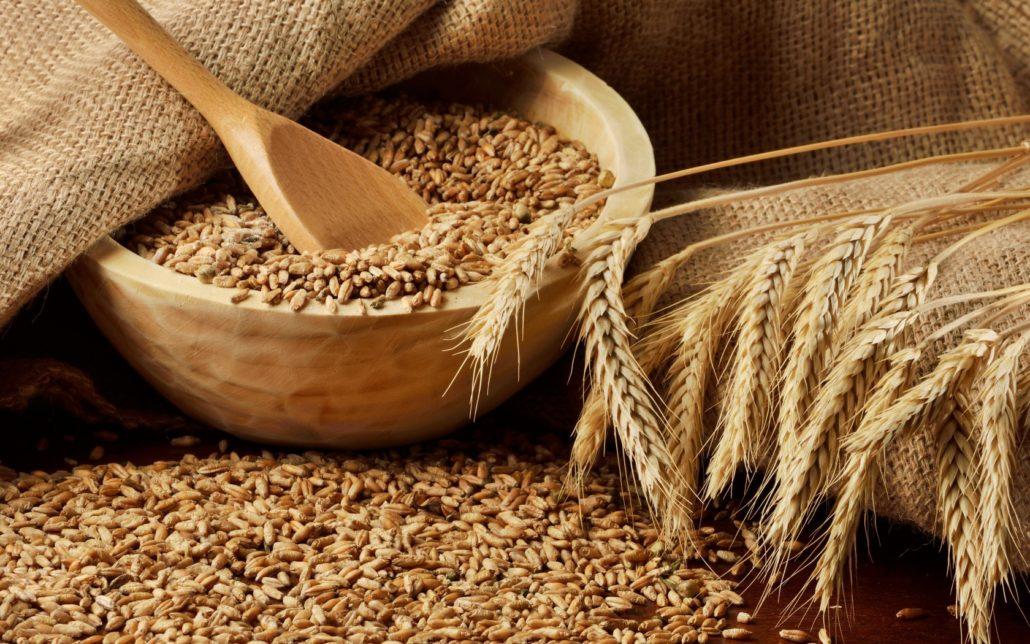 bugda 1030x644 - Пошлина на ввоз пшеницы