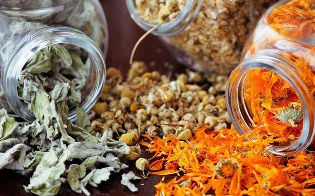 aroma gryadka 02 625x389 - Растения