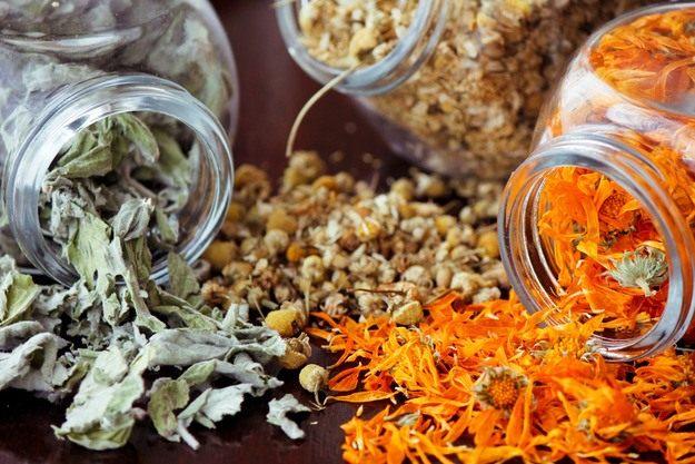 aroma gryadka 02 - Растения