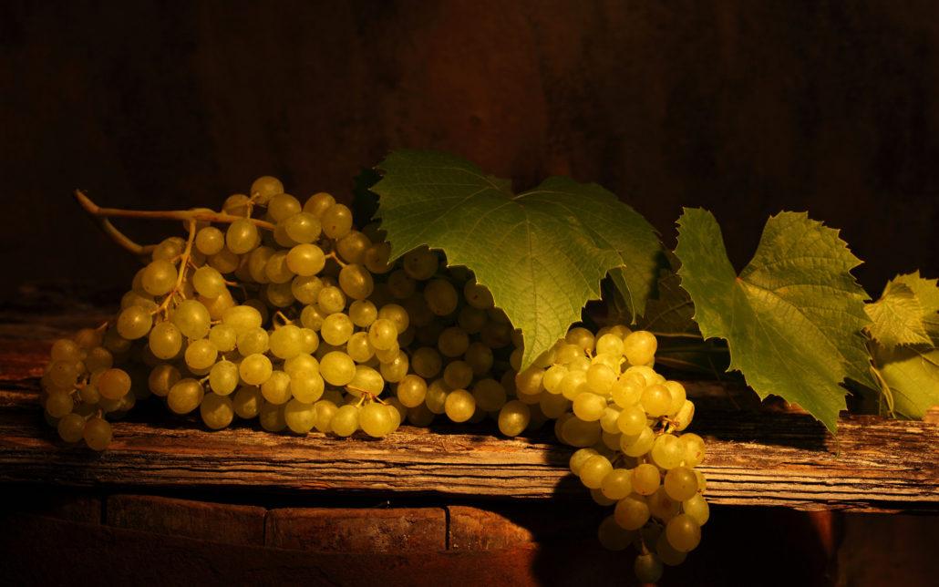 nastol.com .ua 40210 1030x644 - Поддержка виноделия