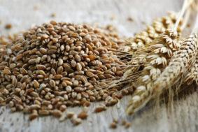 whole grain 283x189 - Импорт зерна