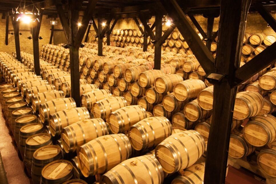 6ea775d271e064bf96558cd76797444e 966x644 - Производство вина